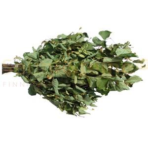 Original finnischer Lindenblüten